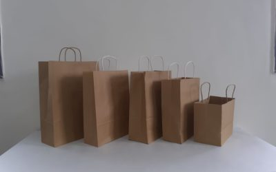 PAPER SHOPPING BAG LINE