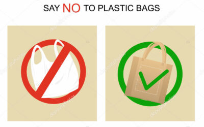Plastic Bag Bans and what they mean